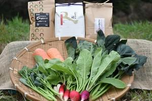 類農園よくばりセット(有機野菜・米2種・有機ほうじ茶)贈り物にもどうぞ♪