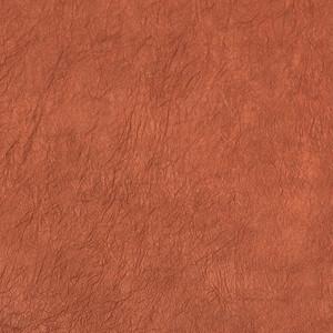 王朝のそめいろ 薄口 24番 赤白橡