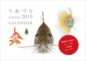 【おまとめ割 30部セット】カレンダー うおづら/UOZURA 2019