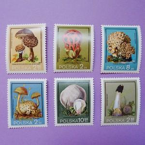 チェコ きのこの切手