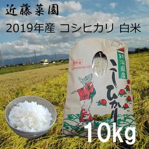 2019年 新潟県産 令和1年産 コシヒカリ 白米 10kg 近藤菜園