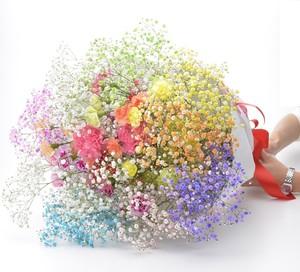 お好みのお花  と【ロマンチックかすみ草】7本のセット オリジナルカスタマイズ