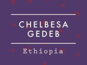 【200g】Ethiopia / CHELBESA GEDEB Natural
