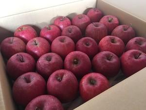 長野県産りんご 小玉サンふじ 5kg箱