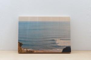 Wood Panel 湘南 #4 _ B5