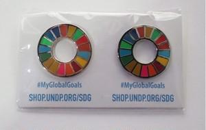【2個】SDGsピンバッジ『SDGs One』