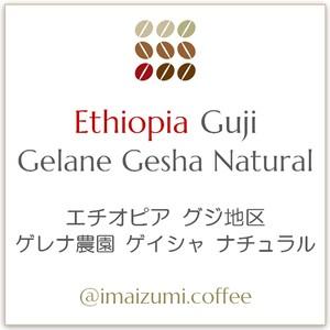 【送料込】エチオピア グジ地区 ゲレナ農園 ゲイシャ ナチュラル - Ethiopia Guji Gelane Gesha Natural - 300g(100g×3)