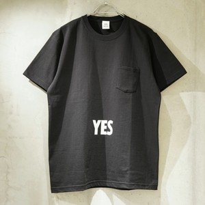"DRESSSEN  DRES""SPECIAL""SSEN YES/NO THANKYOU T-SHIRTS (生成りロゴ) / DSST33"