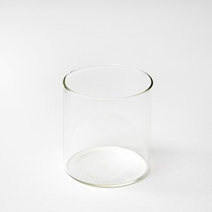 VISION GLASS/LW