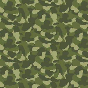 camouflage_024