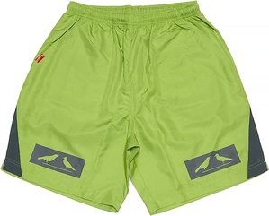 2 BIRDS BOX LOGO TRAINING SHORT