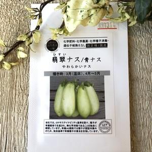 翡翠ナス/青ナス ORGANIC SEEDS 固定種 有機種子