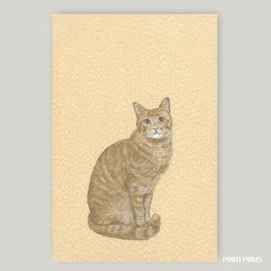 【御朱印帳】かわいい猫帳 [茶とら] +ビニールカバー