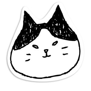 勝ち気な顔の猫メッセージカード
