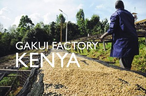 KENYA【GAKUI FACTORY】 -french- 200g