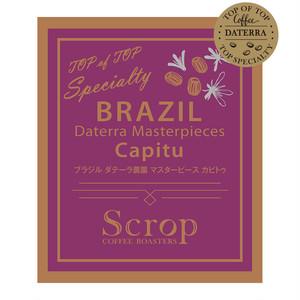 会員限定 ブラジル ダテーラ農園 カピトゥ マスターピースオークションロット 中浅煎り (100g×10袋) 1Kg