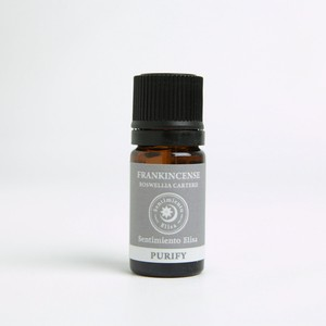 フランキンセンス Boswellia carterii/Boswellia thurifera