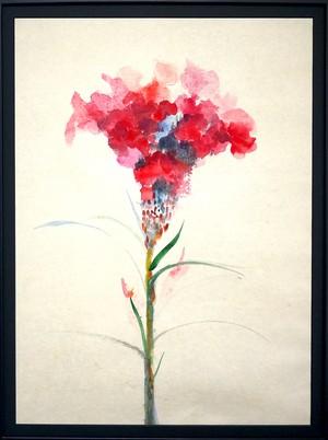 水彩画 | ケイトウの花