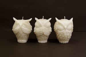 OWL/Silver~Three wise owls~