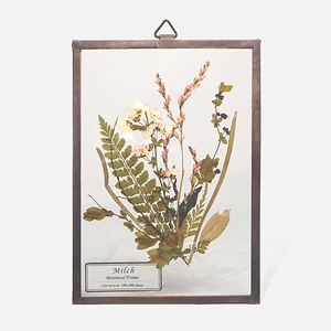 Botanical Frame S010(A_Copper)