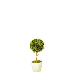 "【CH07-G297S】Boxwood topiary ""Ball"" S トピアリー / グリーン / ナチュラル"