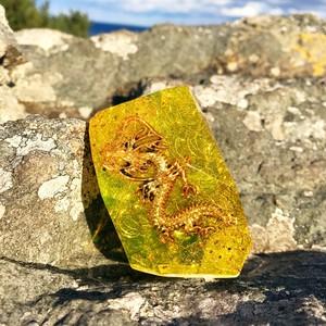 鉱石型オルゴナイト・黄龍