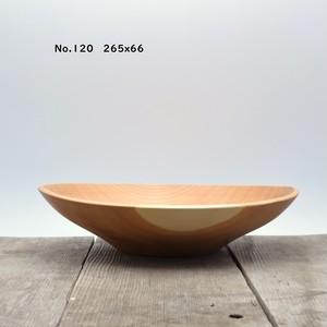 サラダボウル No.120 265X66