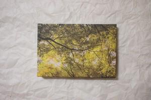 和紙の写真パネル#15