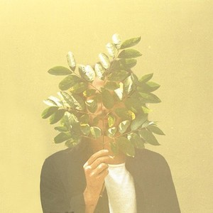 (2LP)FKJ 「French Kiwi Juice」