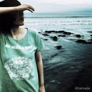 チズガメTシャツレディース(Map turtle women's T-Shirts)
