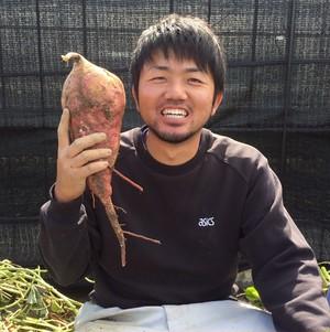 福岡県糸島産「安納芋」1kg