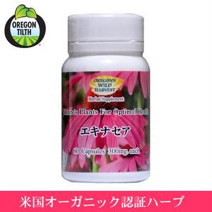 エキナセア 60粒 ( Echinacea )(オレゴンズワイルドハーベスト) 正規輸入品