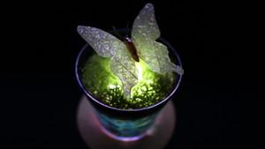 Healing lamp 蝶 ver.2