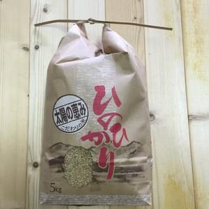 《送料無料》【玄米5kg】奈良県 矢田産 ひのひかり