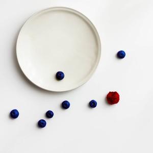 「シエル Ciel」きほんのうつわ プレート 中皿 14cm ホワイト 美濃焼 520103