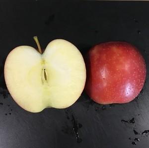 【出荷終了】岩手産 樹成り完熟!減農薬栽培りんご シナノスイート 5Kg(18~20玉)
