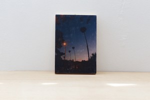 Outlet_WoodPanel_California_A5_#14
