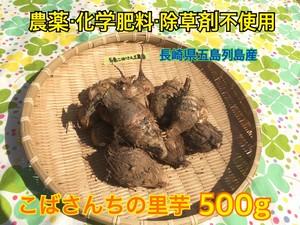 『里芋』500g