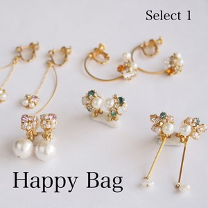 ≪Select 1≫Happy Bag