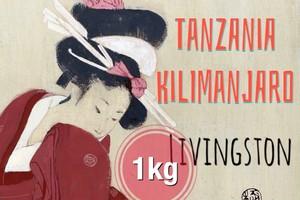 タンザニア キリマンジャロ もっとお得な1kg コーヒー豆【フルシティロースト】