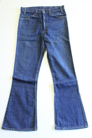Levis 646 Denim pants