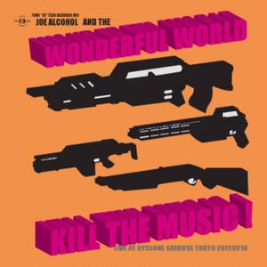 THE WONDERFUL WORLD/KILL THE MUSIC 最新型ベスト盤CD