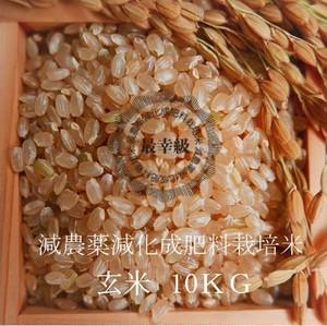 減農薬栽培 〈元年産〉南魚沼産コシヒカリ 玄米10kg