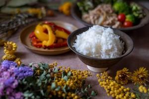 【定期購入/1ヶ月毎】大自然米【精白米】10kg x 6回(半年)5%お得!