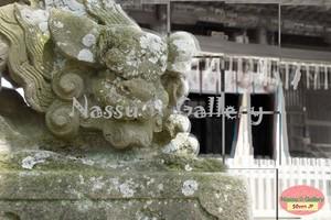 佐原/八坂神社の狛犬①