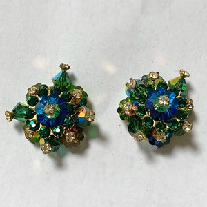 Vintage Multi Color Cluster Earrings ②