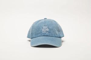 DENIM 6PANEL CAP