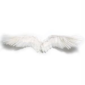【天使の翼】 天使の羽 コスプレ衣装 舞台用 灰羽連盟 エンジェル