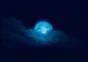 IN THE NIGHT (幅60cm × 高さ184cm)