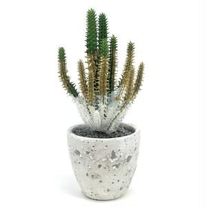eco plant 015 フェイクグリーン (サボテン) / 陶器製花器